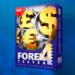 FX 検証ソフト フォレックステスター Forex Testerが凄い!